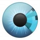 idency-eye